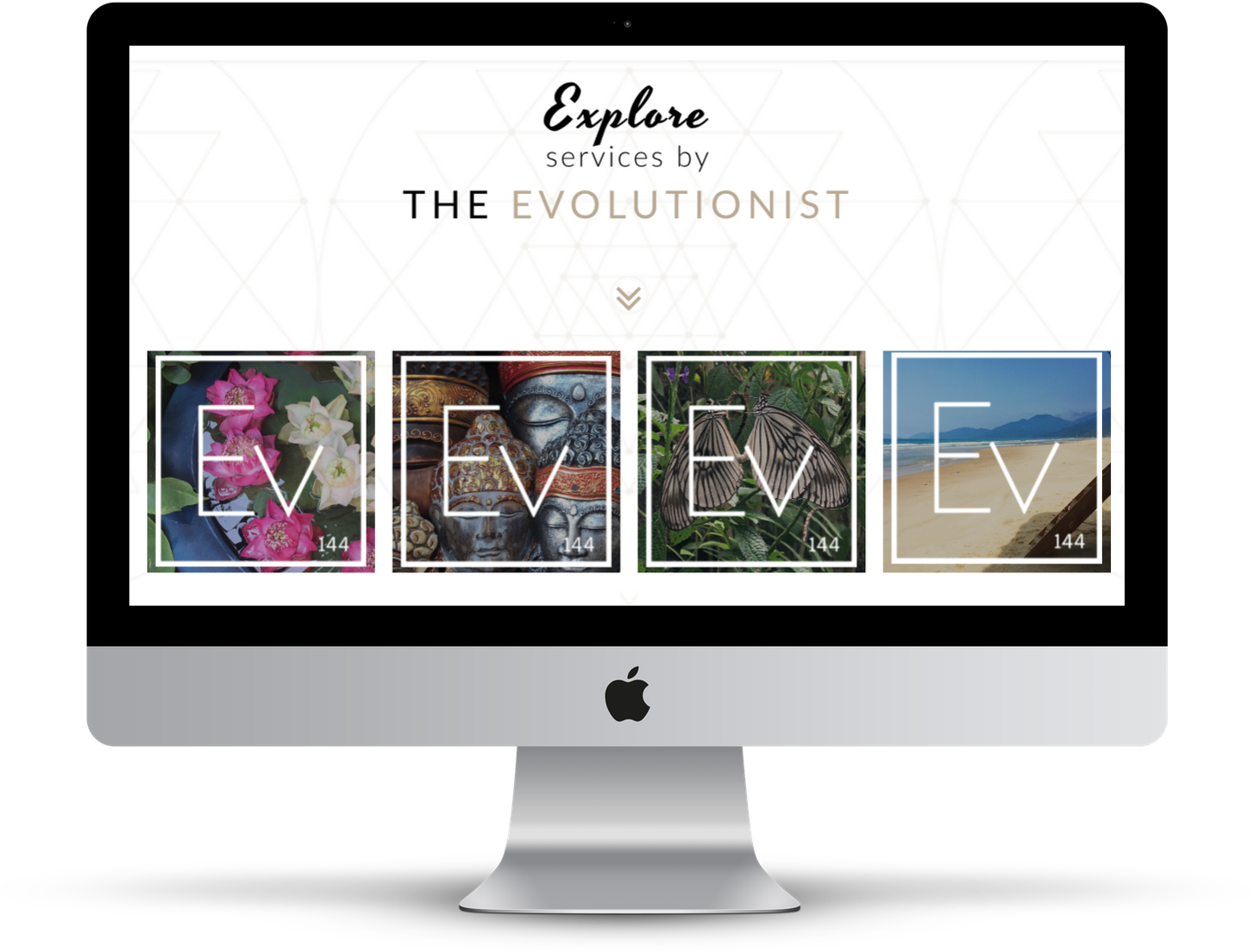 5- EVOLUTIONIST - DESKTOP